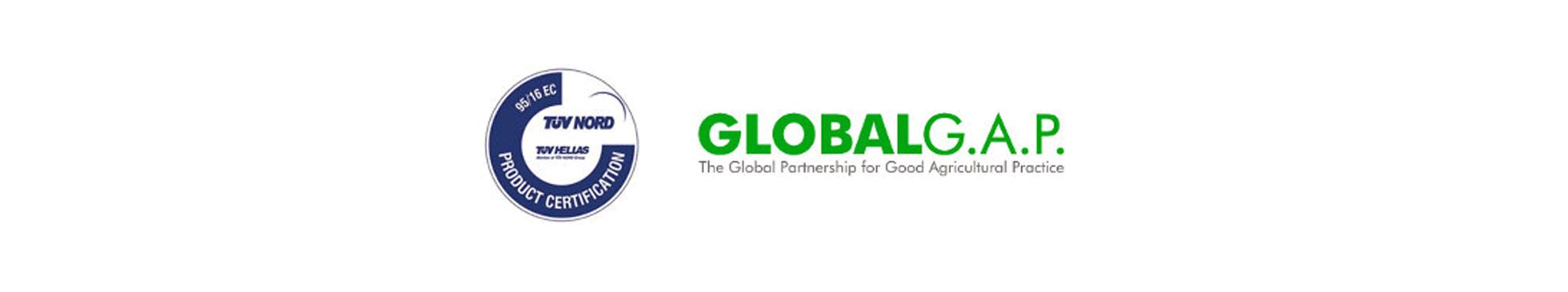 global-iso
